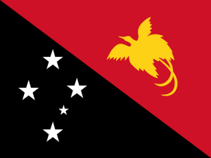 The flag of Papua New Guinea.