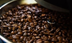 Close-Up-of-Coffee-Beans--007